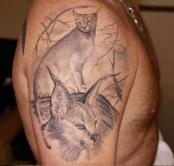 Caracal Tattoo