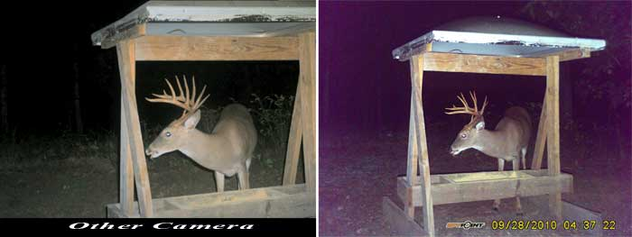 Trail Camera Comparison